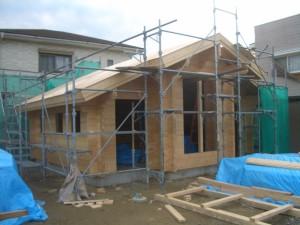 ログ組が完了して屋根工事に入ります。